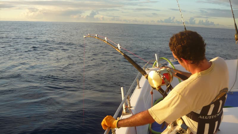 Big game fishing in Reunion island